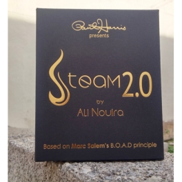 STEAM 2.0    -   NOUIRA ALI & PAUL HARRIS pré-commande