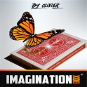 IMAGINATION BOX  -   OLIVIER PONT